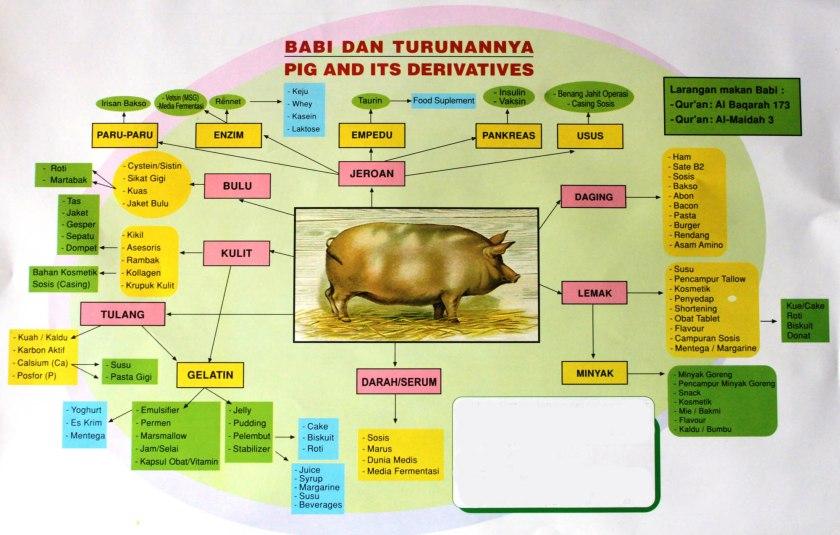 babi dan turunannya